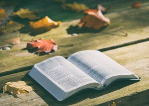 Bible-open-on-a-table-with-leaves